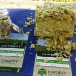 crosby-centennialhops